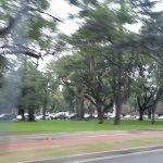Foto de Bosques de Palermo
