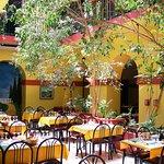 Le patio du Ligure, arbres naturels