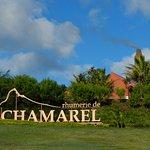 Photo of Rhumerie de Chamarel