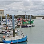 Le port de la Cotinière