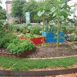 Jardin potager devant le musée de l'image