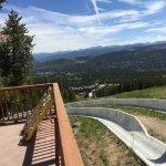 The Alpine Slide