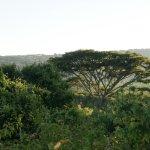 Lemala Ngorongoro Tented Camp Photo