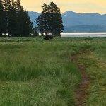 Foto de Yellowstone Lake