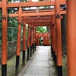 Torii (gates)