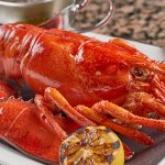 We stock our tank with the highest quality Maine lobsters