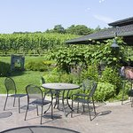Sit outside and enjoy a wine tasting and take in the views of the growing grape vines.