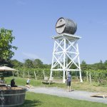 The vineyards offer free tours, at 1 and 3 p.m. on the day we visited.
