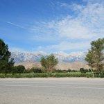 Photo de Best Western Plus Frontier Motel