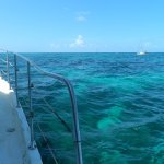 Beautifully clear water at the reef