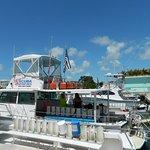 Captain Slate's SCUBA adventure - You can also just snorkel.