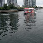 An Aquabus on False Creek
