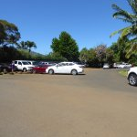Park here at the end of Kapiolani Rd.