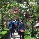 Exploring the gardens.
