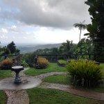 The garden behind the villa room