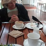 """A surprise visit by a wonderful little """"willy wagtail"""" whilst having lunch at the Perth Mint."""
