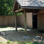 Photo of Great Plains Zoo & Delbridge Museum of Natural History