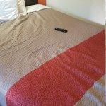 Foto de Motel 6 Salina