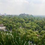 Photo of Wyndham Garden Mexico City Polanco