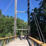 bridge to the walking trail