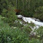 Running water and bridge