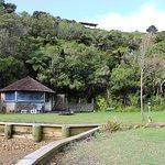 Punga Cove Resort Foto