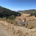 My trusty Specialized Roubaix SL4 rental from Dr. J's Bicycle Shop on the Drum Canyon Rd., Solva