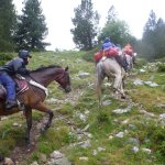 Like climbing with horses? Then this trail is for you! :-)