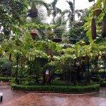 Photo of Betel Garden Villas