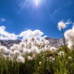 Photo of Holimites - Holiday into the Dolomites