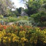 Photo of Garden of the Groves
