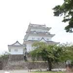 Photo of Odawara Castle