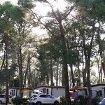 Photo de Camping Village Dei Fiori