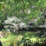 Jardín de la entrada