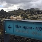Just 600 meters to the Blue Lagoon