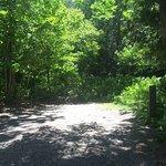 Parc de la Gorge de Coaticook Foto