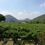 Photo of Azienda Agrituristica Olivato