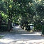Calle de los bungalow