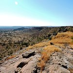 Pause panorama sur Mashatu reserve