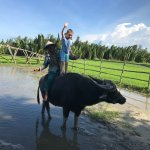 Riding the water buffalo