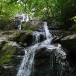 Photo of Dark Hollow Falls