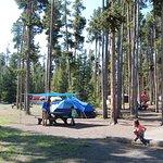 Photo de Grant Village Campground