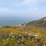 Photo of Point Loma
