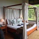 Photo de Royal Palm Hotel Galapagos