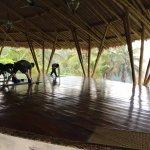 Amori Yoga Studio