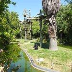 Many large primate enclosures