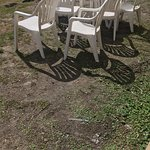 """Lawn"" between building and beach. Chairs never straightened or cleaned. Just weeds and dirt!!!!"