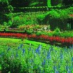 Savoy Hotel Sightseeing - Botanical Gardens