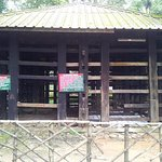 wooden cage at elephant kraal