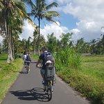 Bali Bike Adventures